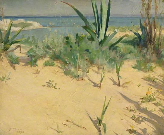 Sand Dunes, Tangier