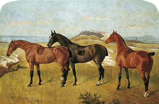 Three Horses: 'Whissendine', 'Swallow' and 'Tiptop'
