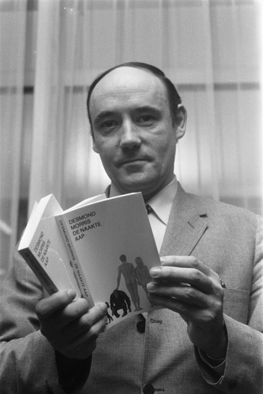 Desmond Morris with his book 'The Nude Ape' in Amsterdam