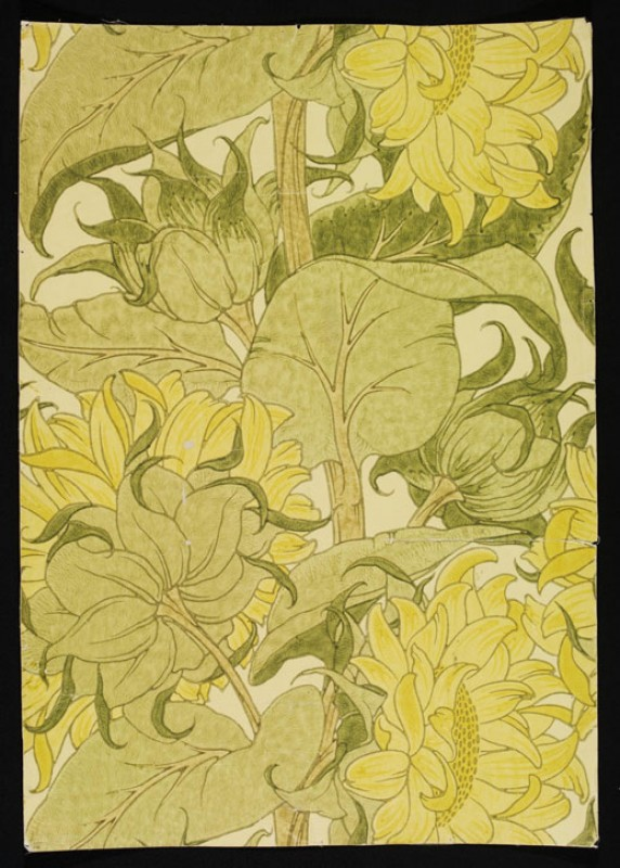 Portion of 'The Cestrefeld' wallpaper, large yellow sunflowers with green foliage, on a pale ground