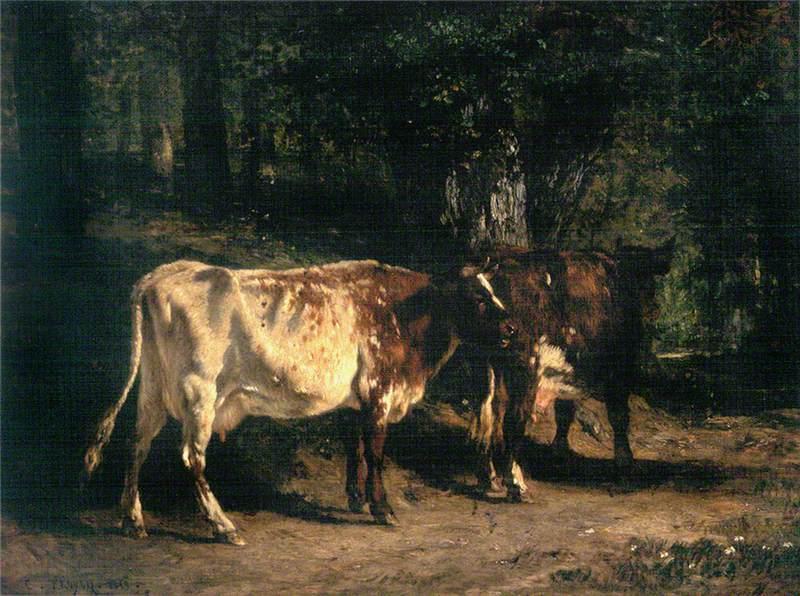 Vaches au pâturage (Grazing Cows)