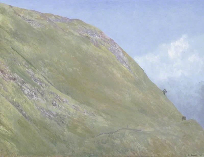 Hillside in Wales