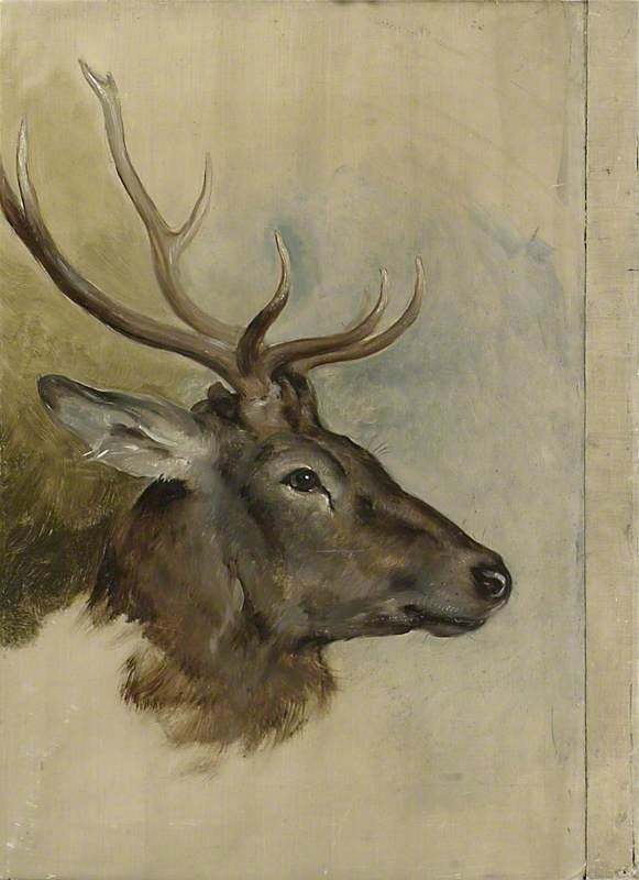 Two Studies of a Stag's Head (verso)