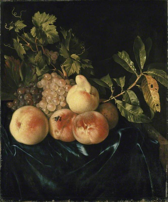 Still Life of Peaches and Grapes