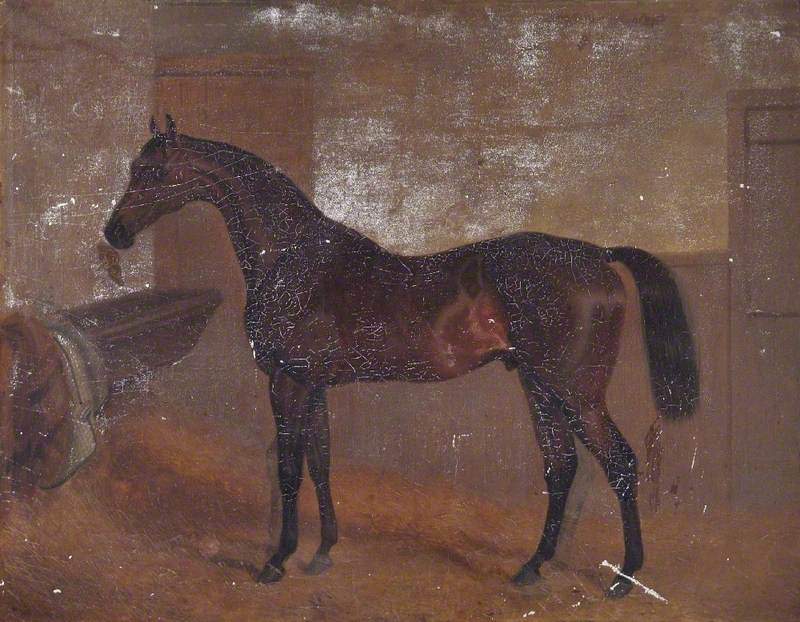 Bay 'Middleton', Winner of the Epsom Derby, 1836