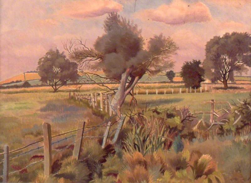 A Marshy Landscape