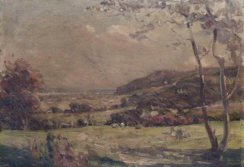 Autumn Fields near Colwyn Bay