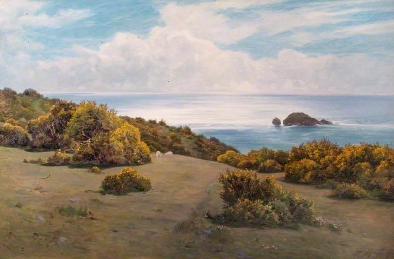 Baggy Point, Devon (Landscape, Sark)