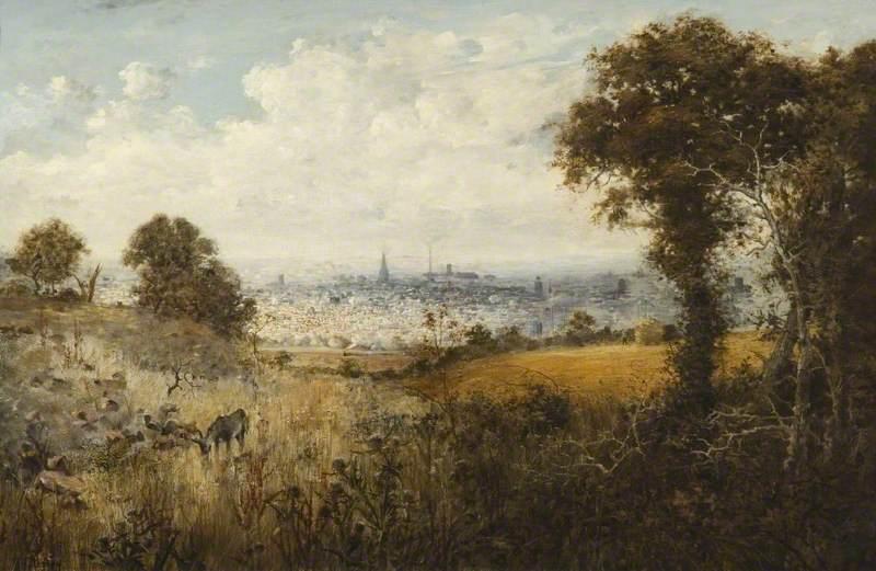 Northampton from Hunsbury Hill