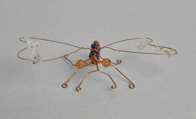 Cobweb Fly