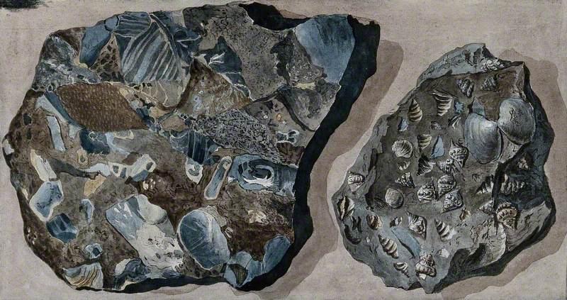 Two Mineral Specimens Found in the Fossa Grande on Mount Vesuvius
