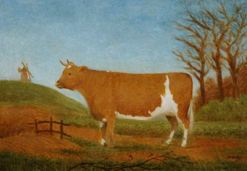 Guernsey Heifer