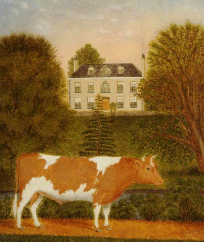 Guernsey Bull in front of Manoir de Pierre Percee