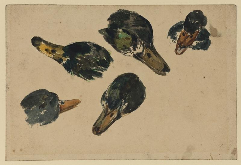 Five Heads of Ducks