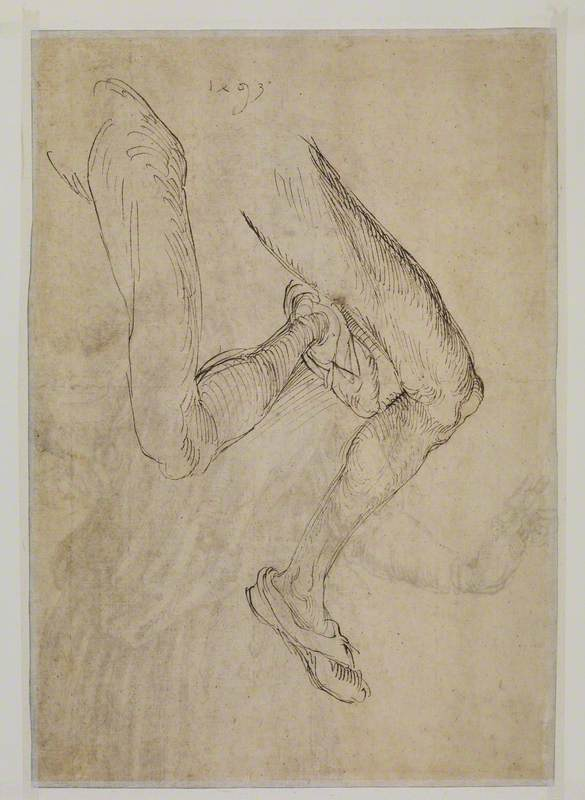 Study of a Left Leg from Two Viewpoints