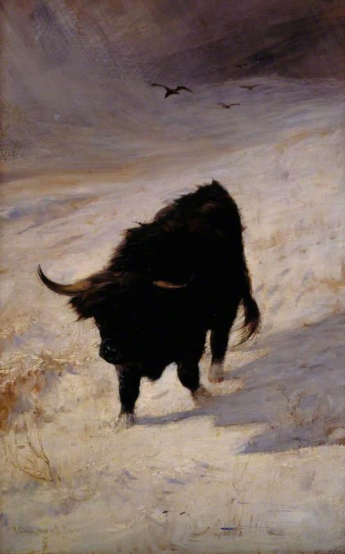 Black Beast Wanderer