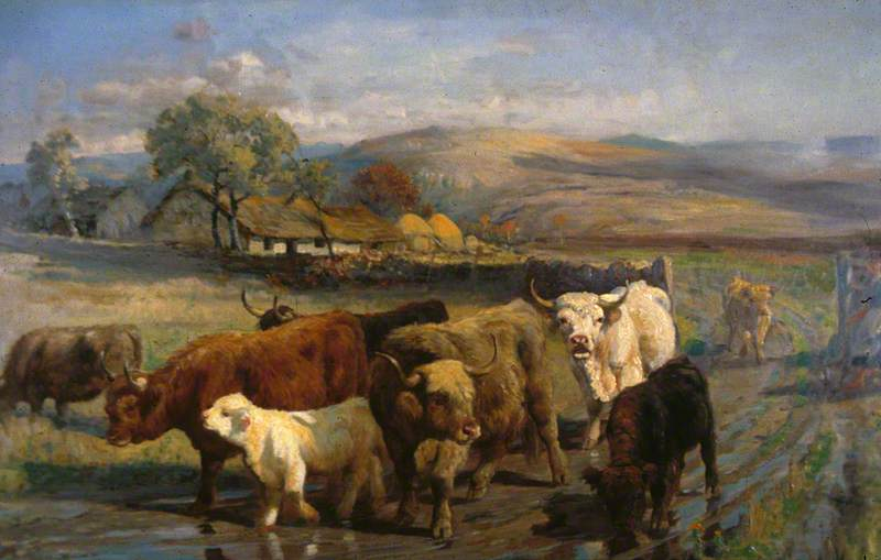 Going to Pasture
