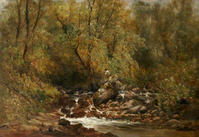 A Boy by a Rocky Wooded Stream