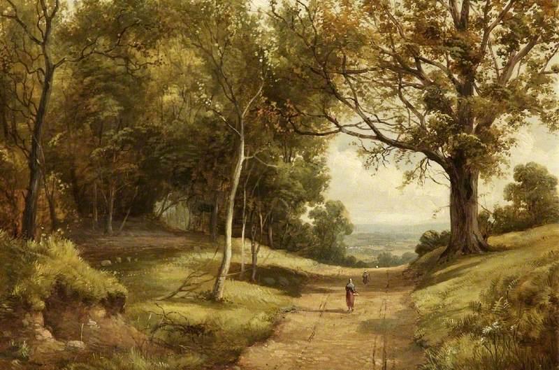 Sherwood Forest, Nottingham