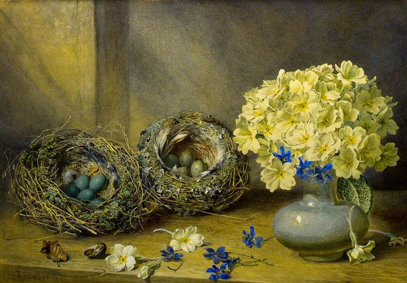 Still Life with Birds' Nests and Primroses