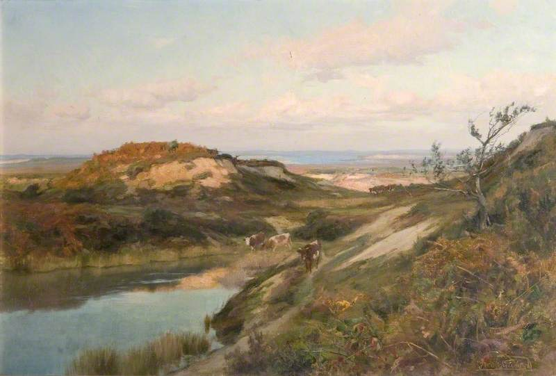 Purbeck Heath, Dorset, with the Coast Beyond