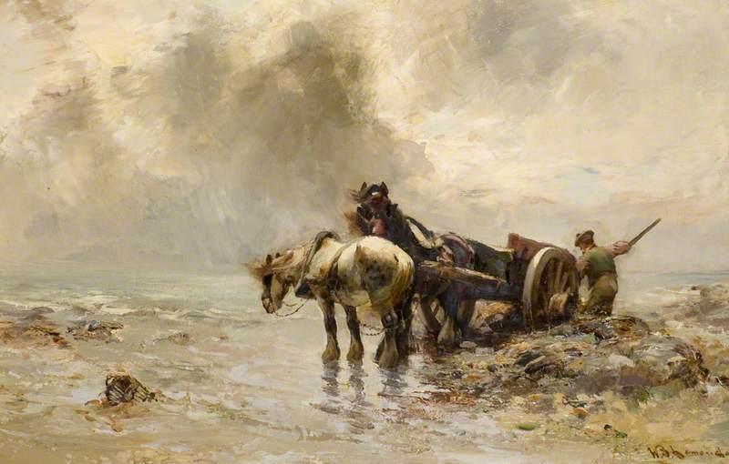Carting Seaweed
