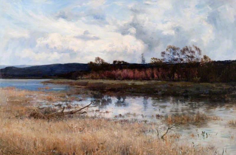 Tay Backwater Kinfauns, Perthshire