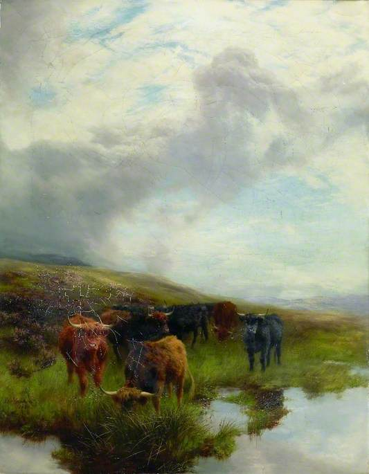 On the Moors