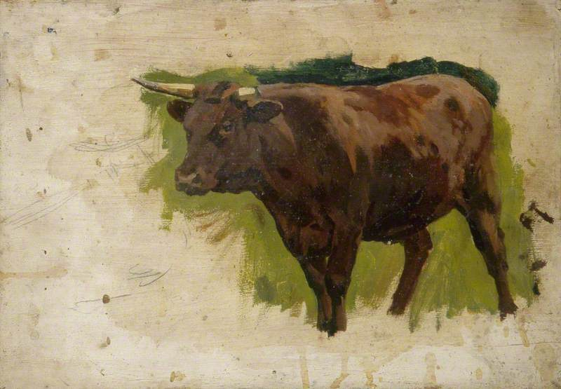 Brown Bull: Cow Looking Left