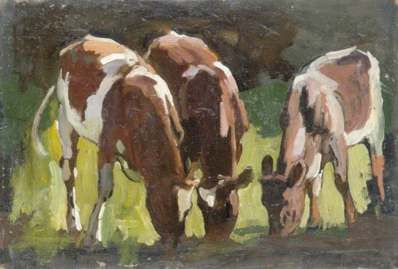Three Cows Grazing