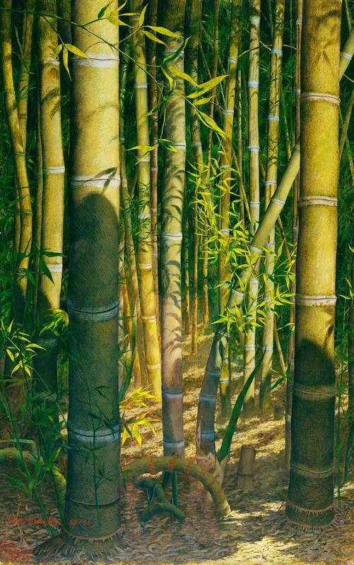 The Bamboo Grove on an Island near Ascona on Lake Maggiore