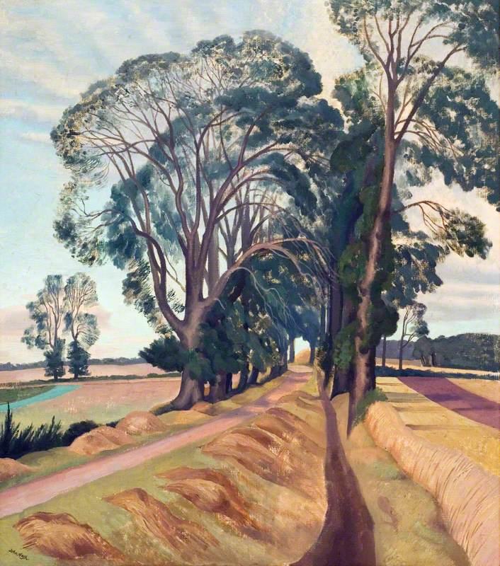 An Avenue of Elms