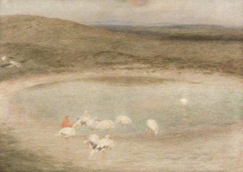The Sacred Pool