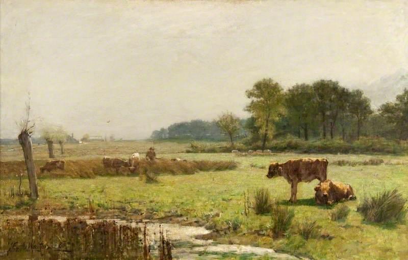 A Surrey Meadow, Morning