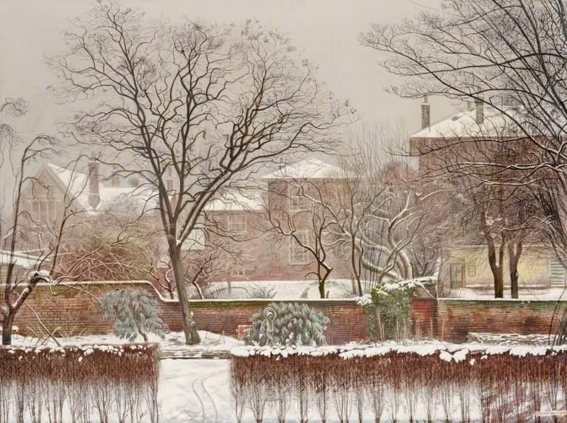 Urban Garden under Snow