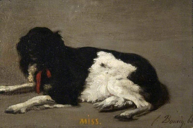 'Miss'