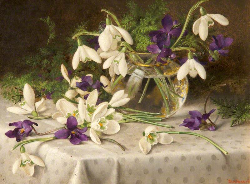 Snowdrops and Violets