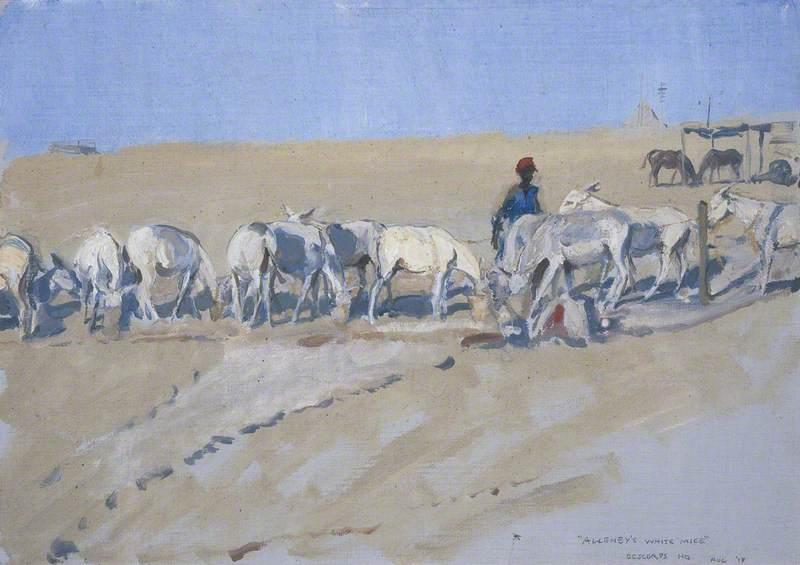Allenby's White Mice: Feeding the Pack Donkeys: Desert Corps HQ