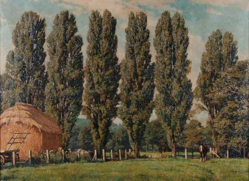The Farm at St James' Hospital
