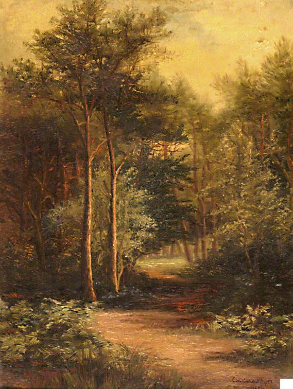 Talbot Woods