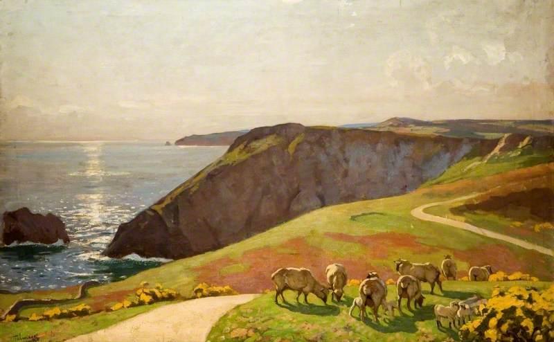 Sheep on Cliffs