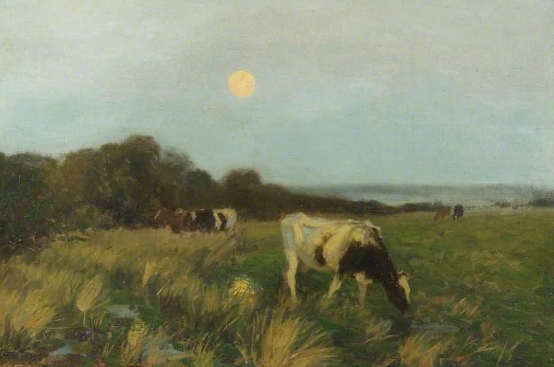 Cattle in Moonlight