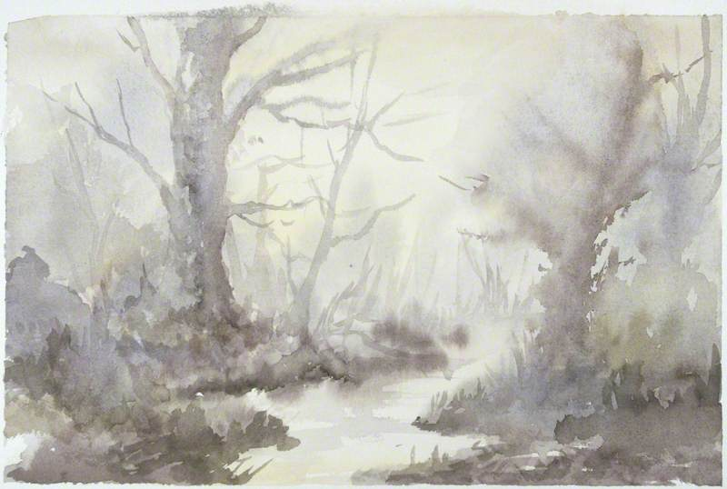 Woodland Misty Morning