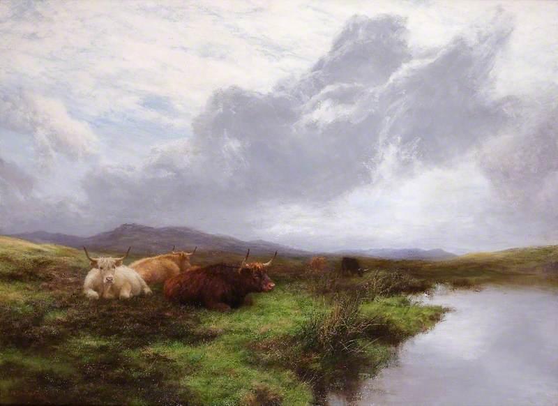 A Quiet Moorland