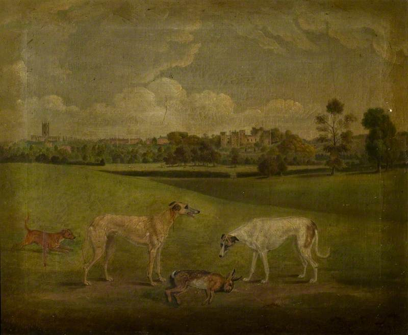 Two Greyhounds and a Hare
