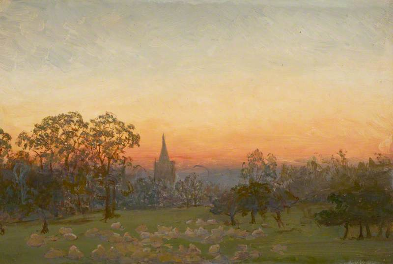 Sunset in Orchard with Sheep