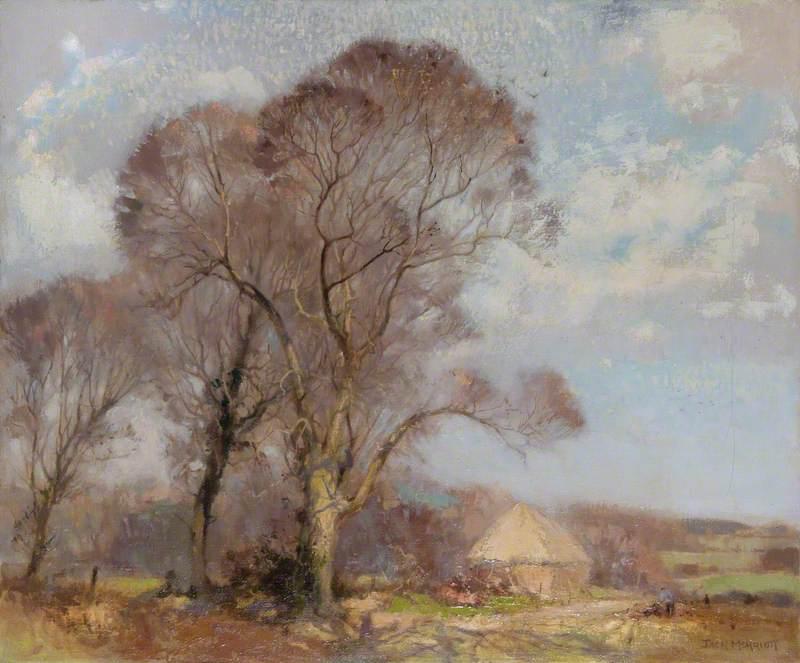 February Sunshine in Shirley, Surrey