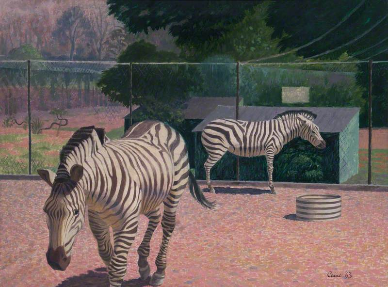 Zebras, Chessington Zoo, Surrey