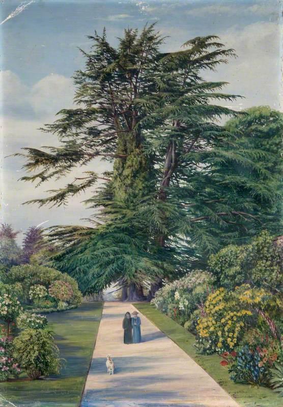 Cedar Path, Alderley Garden, Gloucestershire