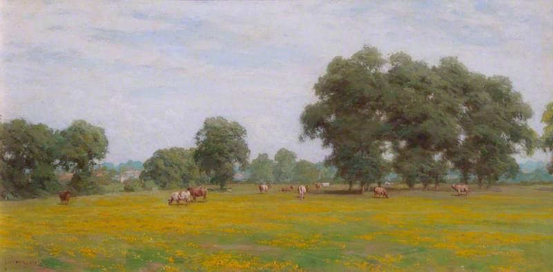Westmead Farmland
